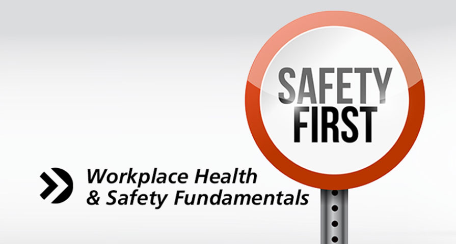 Workplace Health Amp Safety Fundamentals Smart Ehealth
